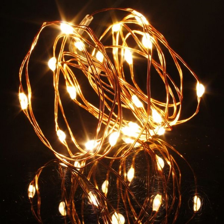 Copper String LED Lights 50L with Battery  5m